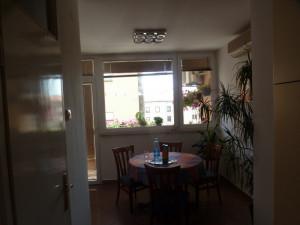 Branimir, dvosoban komforan stan potpuno renoviran